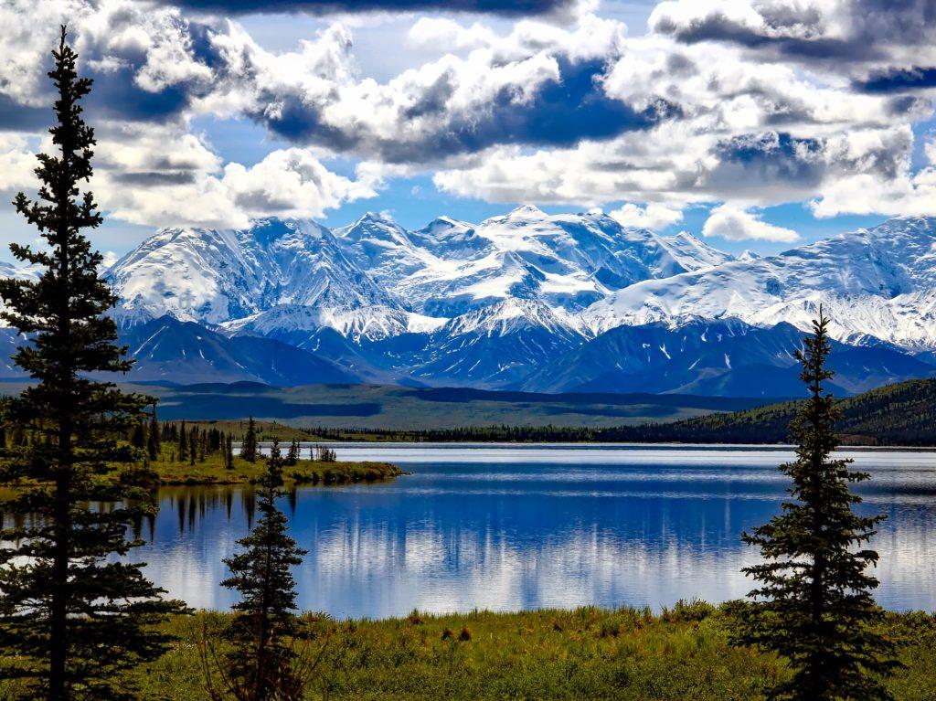 Alaska-Denali nationaal park - cruise bestemming